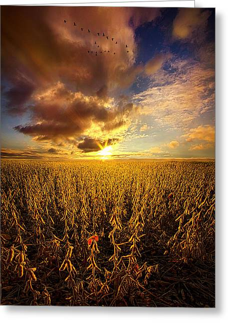 Vertical Flight Greeting Cards - Fly Over Country Greeting Card by Phil Koch