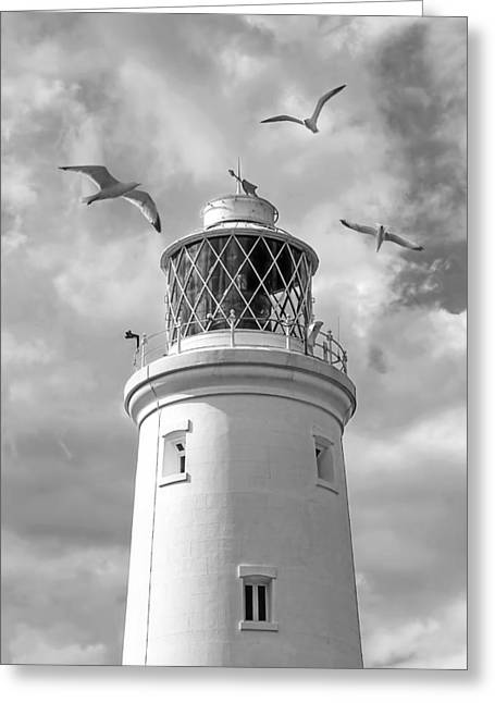 Flying Seagull Greeting Cards - Fly Past - Seagulls Round Southwold Lighthouse in Black and White Greeting Card by Gill Billington