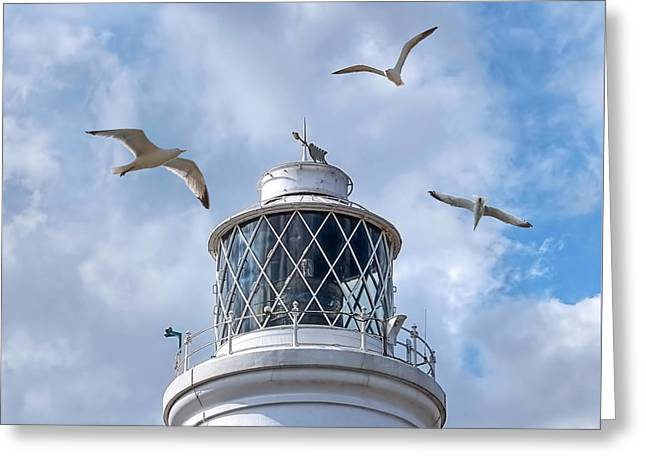 Flying Seagull Greeting Cards - Fly Past - Seagulls Round Southwold Lighthouse - Square Greeting Card by Gill Billington