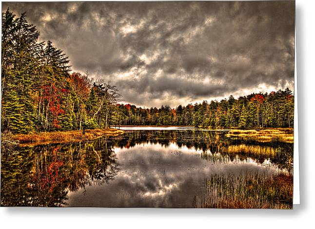 Fly Pond Marsh II Greeting Card by David Patterson