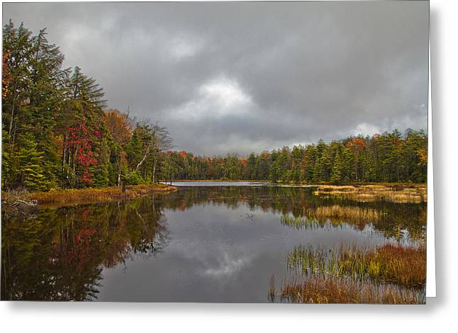 Fir Trees Greeting Cards - Fly Pond near Old Forge New York Greeting Card by David Patterson