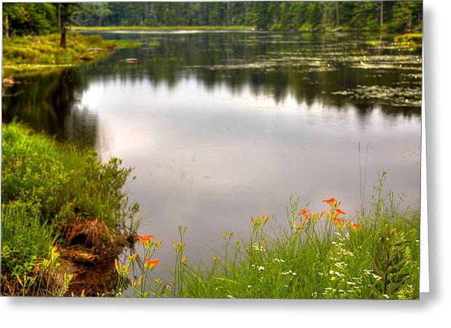 Fly Pond - Rondaxe Road Greeting Card by David Patterson