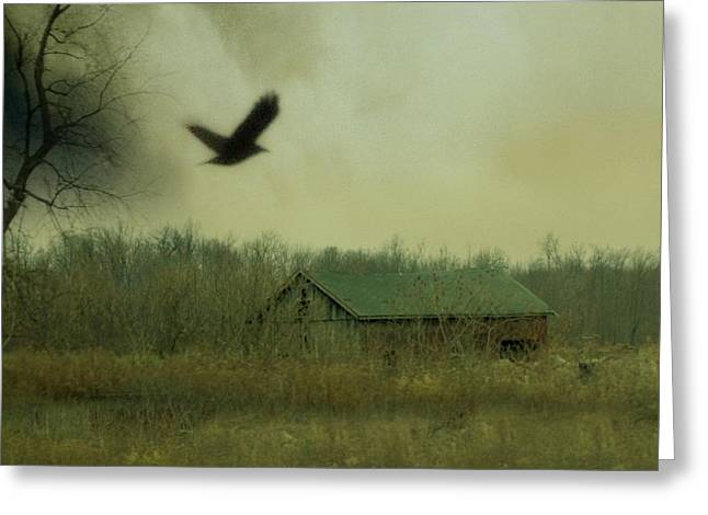 Nature Scene Art Digital Art Greeting Cards - Flying For Cover Greeting Card by Gothicolors Donna Snyder