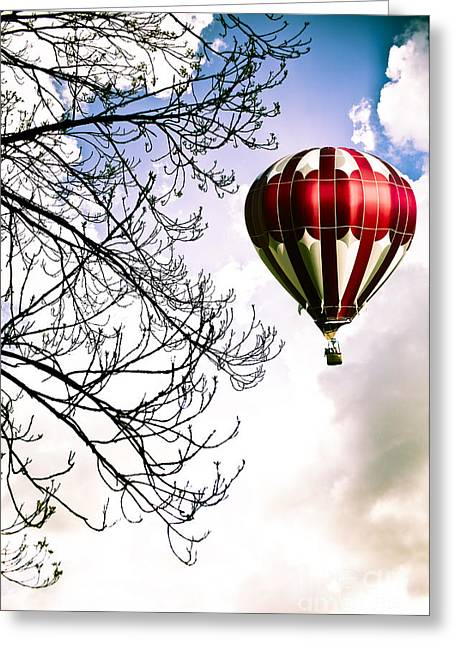 Ballooning Greeting Cards - Flying High Greeting Card by Jan Bickerton