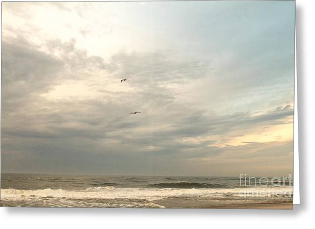 Flying Home  Greeting Card by A New Focus Photography