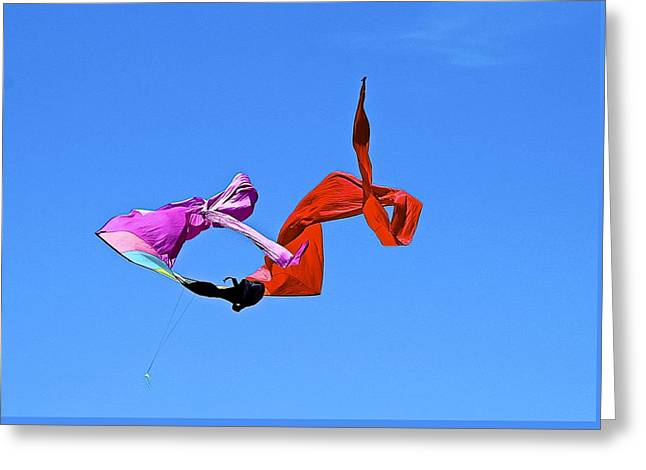 Kite Greeting Cards - Flying in the wind Greeting Card by Barbara Zahno