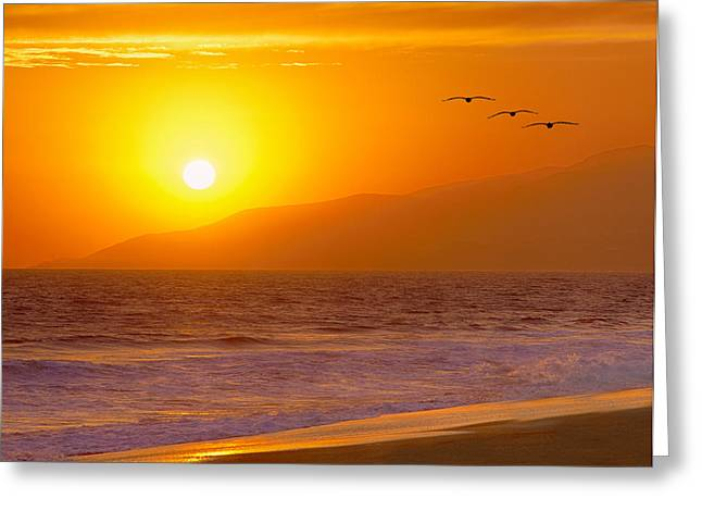 Flying into the Sunset Greeting Card by Robert Jensen