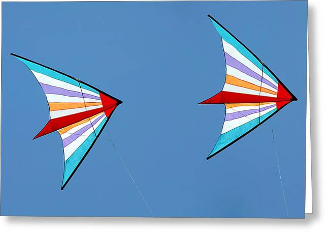 Imagination Greeting Cards - Flying kites into the wind Greeting Card by Christine Till