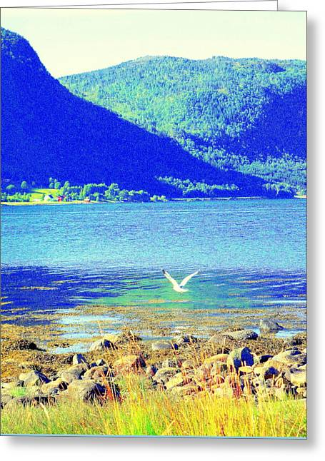 Seagull Flying Low, Mountains Standing Tall  Greeting Card by Hilde Widerberg