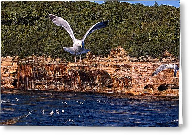 Flying Over The Rocks Greeting Card by Cheryl Cencich