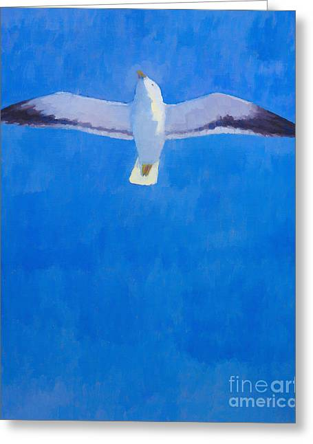 Flying Seagull Paintings Greeting Cards - Flying Seagull Greeting Card by Lutz Baar