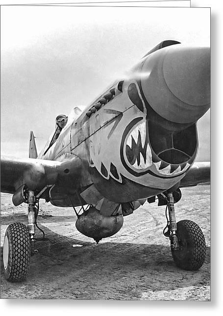 Flying Tigers Greeting Cards - FLYING TIGERS CURTISS P-40 WARHAWK c. 1942 Greeting Card by Daniel Hagerman