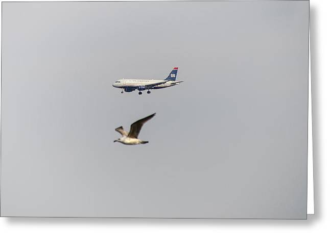 Landing Airplane Greeting Cards - Flying Together Greeting Card by Bill Cannon