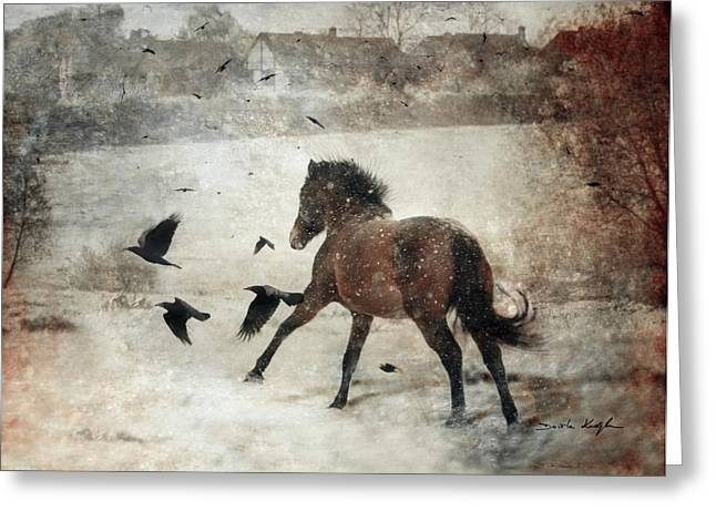 Winter Crows Greeting Cards - Flying With The Crows Greeting Card by Dorota Kudyba