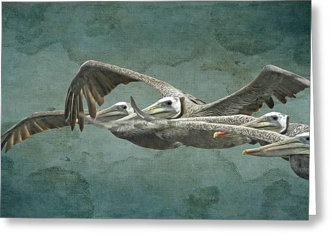 Flying With The Pelicans Greeting Card by Angie Vogel