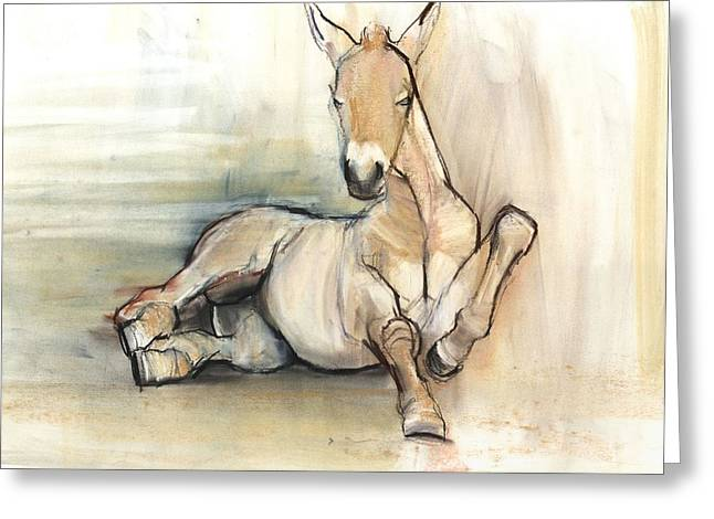 Foal Greeting Cards - Foal, 2012, Charcoal Conté And Pastel On Paper Greeting Card by Mark Adlington