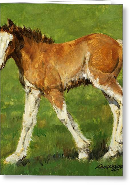 Busch Greeting Cards - Clydesdale Foal Greeting Card by Don  Langeneckert