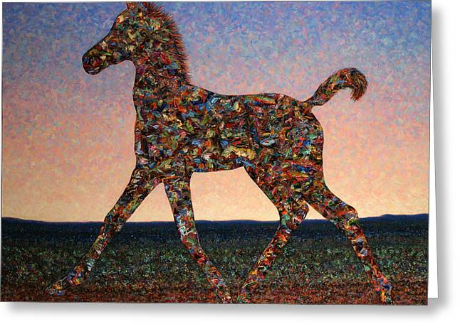 Foal Spirit Greeting Card by James W Johnson