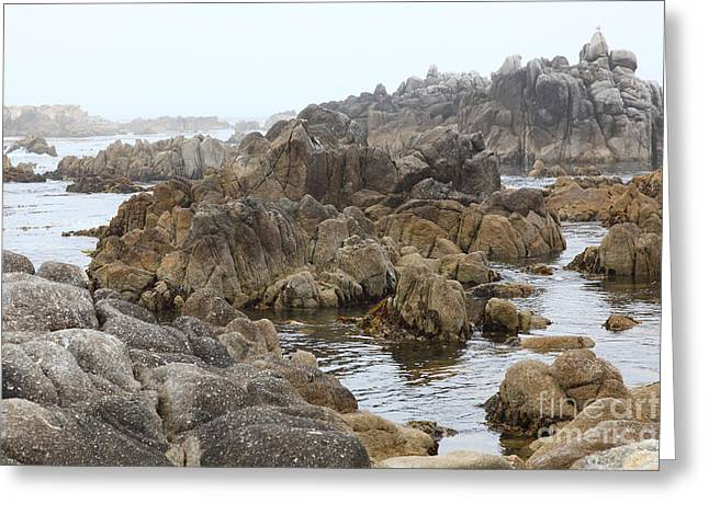 Pacific Grove Greeting Cards - Fog And Rock Formations At Asilomar State Beach in Pacific Grove Near Monterey California 5D25122 Greeting Card by Wingsdomain Art and Photography