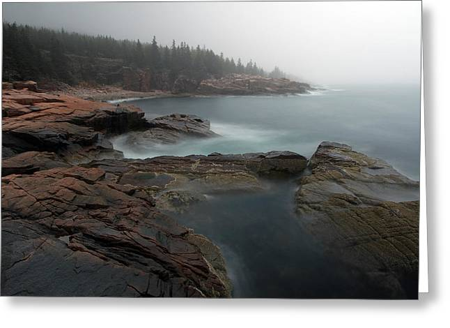 Fog At Acadia National Park Greeting Card by Juergen Roth