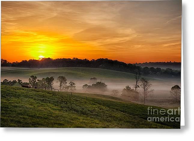 Virginia Farm Greeting Cards - Fog Farms and Fields I Greeting Card by Dan Carmichael