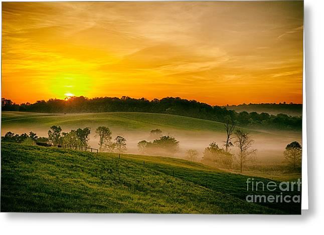 Virginia Farm Greeting Cards - Fog Farms and Fields II Greeting Card by Dan Carmichael
