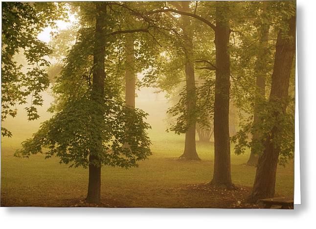 Fog Pyrography Greeting Cards - Fog II Greeting Card by Ilze Lucero