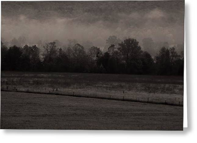 Gatlinburg Tennessee Greeting Cards - Fog In Cades Cove Greeting Card by Dan Sproul