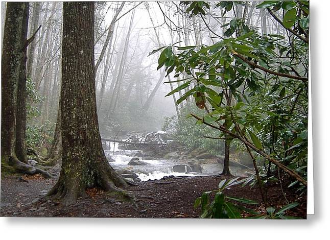 Stream Greeting Cards - Fog In The Smokies Greeting Card by Nelson Skinner