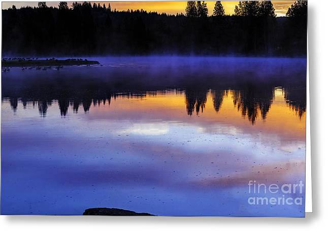 Reflection In Water Greeting Cards - Fog Lights Greeting Card by Nancy Marie Ricketts
