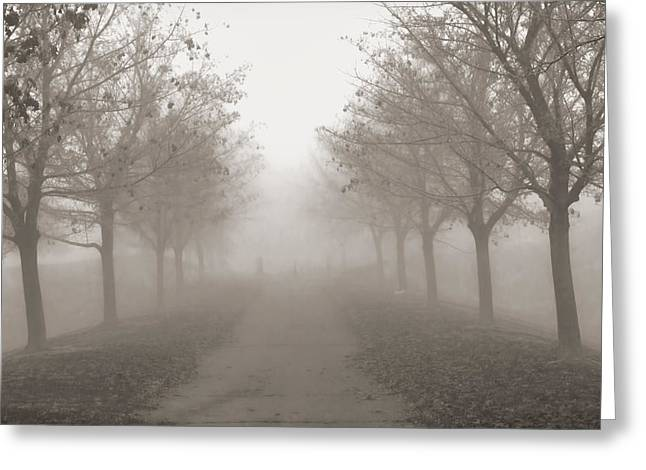 Raw Umber Greeting Cards - Fog Monochrome Greeting Card by Kathy Bassett