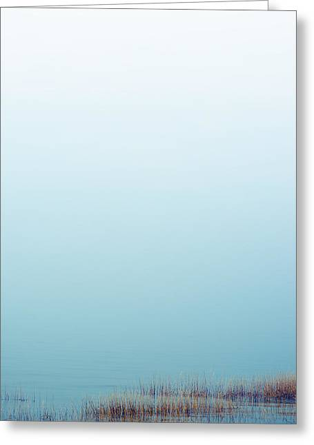 Interior Still Life Greeting Cards - Fog over Salt Marsh Greeting Card by Zak Collins