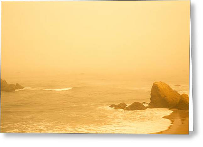 Foggy Beach Greeting Cards - Fog Over The Beach, Mendocino Greeting Card by Panoramic Images