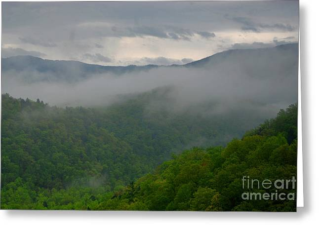 Gatlinburg Tennessee Greeting Cards - Fog over the Smokies Greeting Card by Nancy Mueller