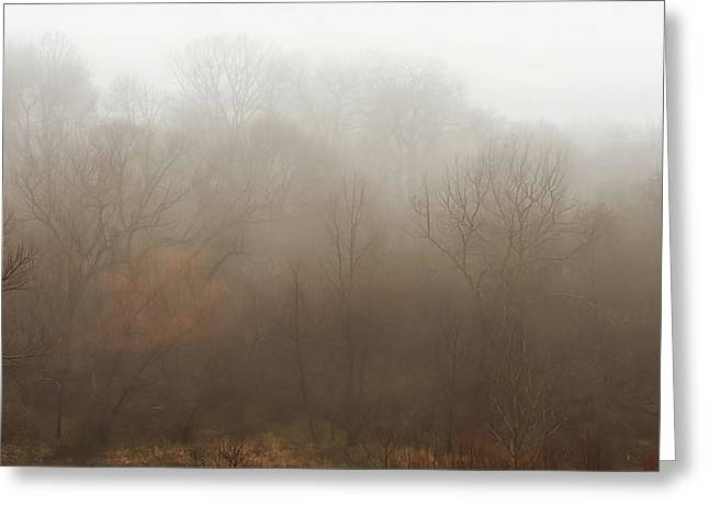 Warm Tones Photographs Greeting Cards - Fog Riverside Park Greeting Card by Scott Norris