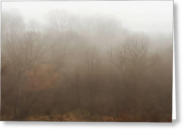 Fog Riverside Park Greeting Card by Scott Norris