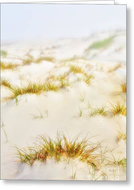 Paint Photograph Greeting Cards - Fog Sand and Dune Grass - Outer Banks Greeting Card by Dan Carmichael