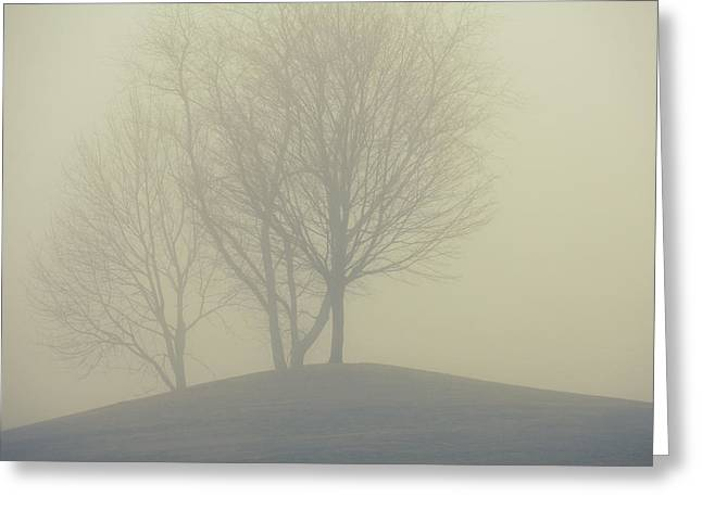 All Around Greeting Cards - Fog Unto Me Greeting Card by Karol  Livote