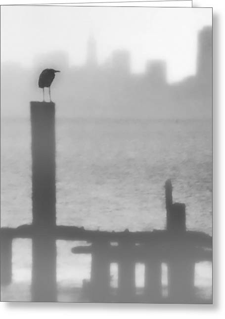 Sausalito Greeting Cards - Fog Watcher Greeting Card by Terry Fiala