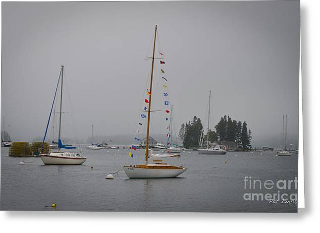 Foggy Ocean Greeting Cards - Fogged in at Monhegan Island Greeting Card by Pat Lucas