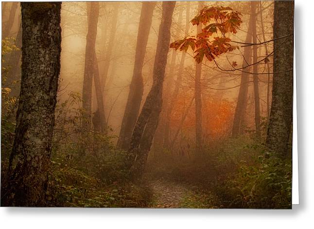 Iron Greeting Cards - Foggy Autumn Greeting Card by Mary Jo Allen