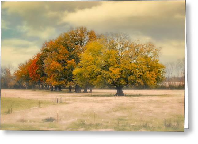 Fall Scenes Greeting Cards - Foggy Autumn Morning - Fall Landscape Greeting Card by Jai Johnson