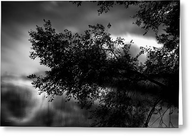 Donna Lee Greeting Cards - Foggy Autumn Morning on the River Greeting Card by Donna Lee