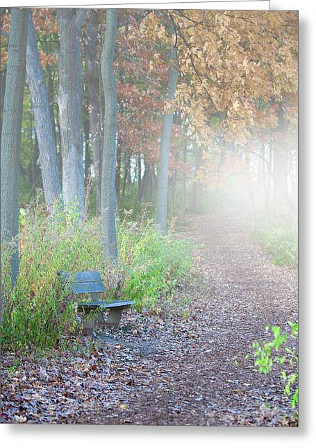 Leaves Photographs Greeting Cards - Foggy Autumn Morning Greeting Card by Sebastian Musial
