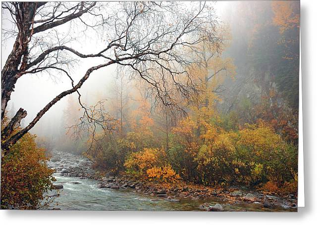 Eerie Greeting Cards - Foggy Autumn Greeting Card by Ron Day