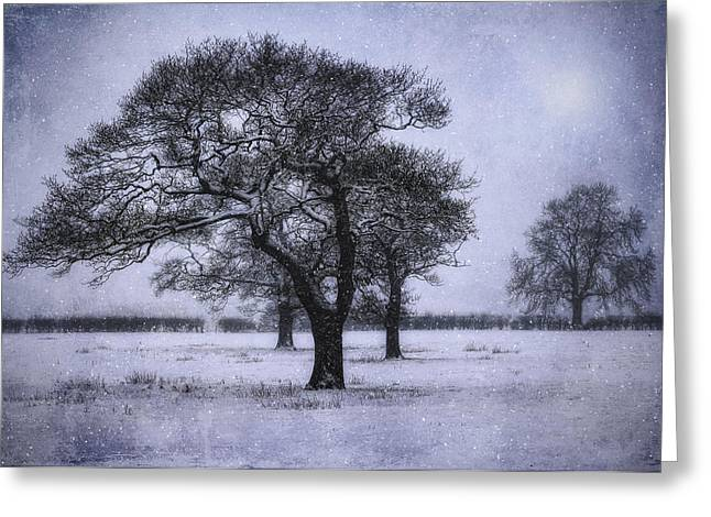 Winter Scenes Rural Scenes Greeting Cards - Foggy Christmas Eve Greeting Card by Ian Mitchell
