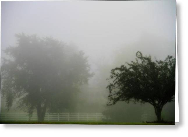 Wine Scene Greeting Cards - Foggy Country Landscape Greeting Card by Dan Sproul