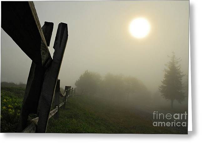 Foggy Country Road Greeting Card by Lois Bryan
