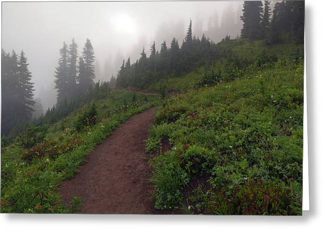 Foggy Crest Trail Greeting Card by Mike  Dawson