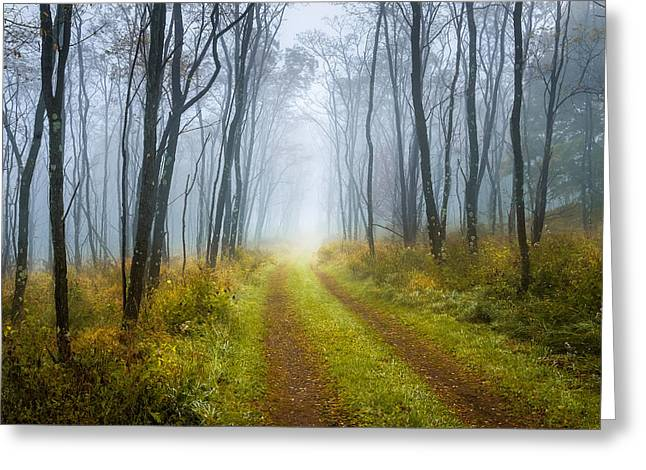 Dolly Sods Wilderness Greeting Cards - Foggy Dolly Sods West Virginia Appalachia Greeting Card by John Messner